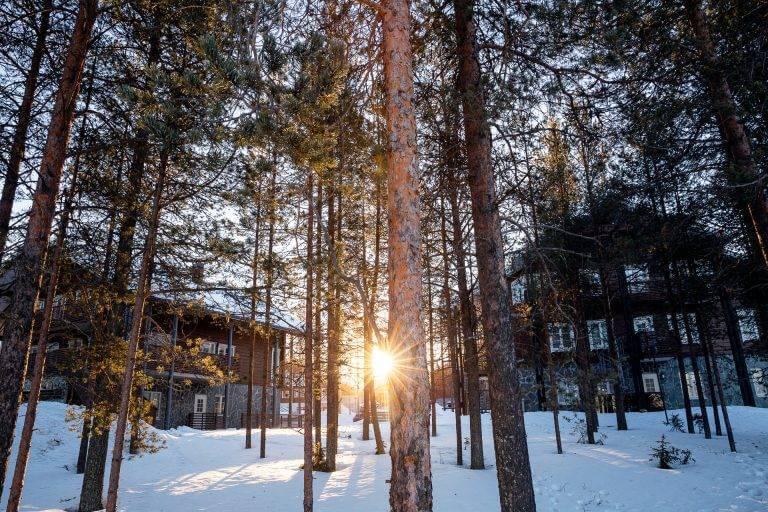 8 Tage Fotoreise Finnland Lappland